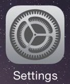 iPhone settings icons
