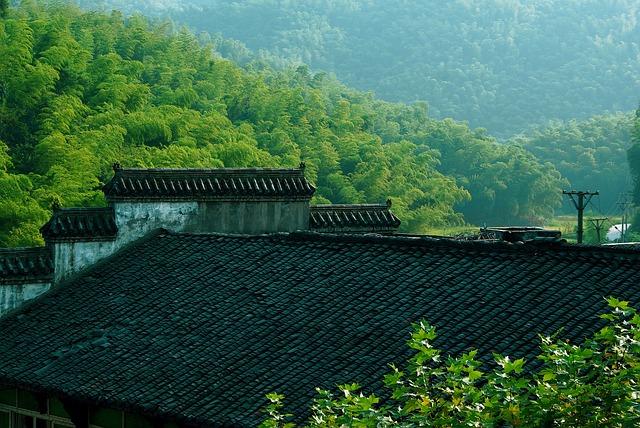 Roof in Sichuan