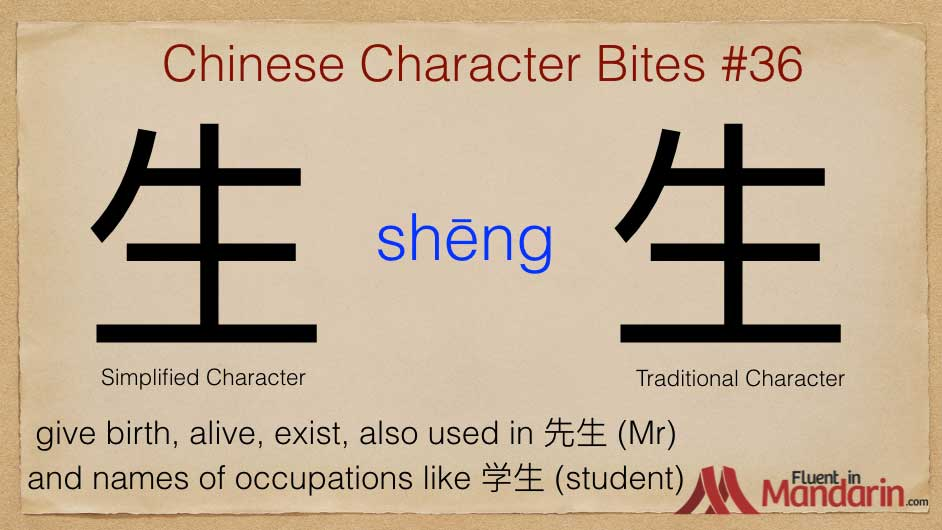 Chinese character bites 36 - 生